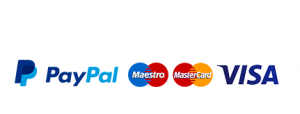 Secure Payments with Cards by PayPal